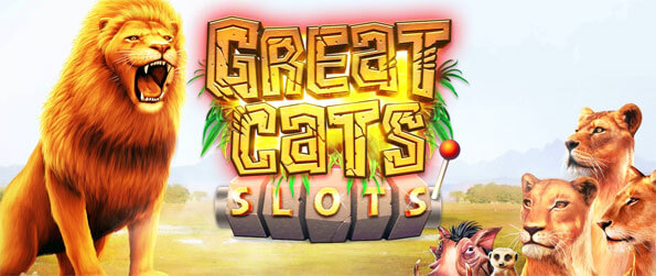 Great Cat Slots - Play this fun and addicting slots game that'll have you hooked for hours upon hours.