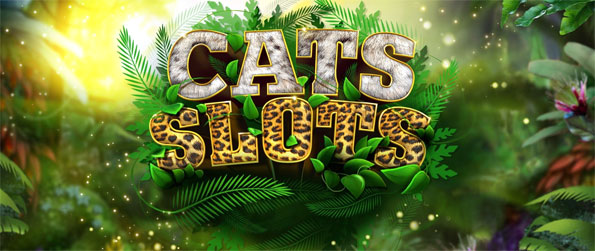 Cats Slot Machines - Enjoy this delightful slots game that you can play in the comfort of your mobile phone.
