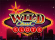 Wild Classic Slots game