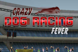 Crazy Dog Racing Game 2020 thumb
