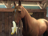 Giving a treat in Equestriad World Tour