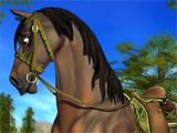 The Horses on Star Stable are amazing!