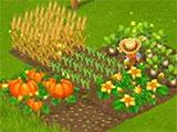 Farm Days: Harvesting crops