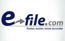 Software to file taxes online - Survey Option 3