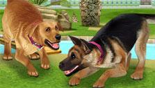 Keep adorable pets in The Sims FreePlay