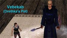 Playing as a necromancer in EverQuest