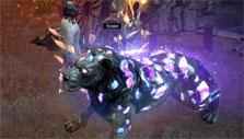 Pet in Path of Exile