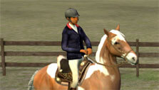 Paddock Ride in My Horse