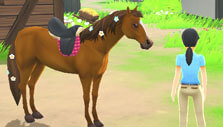 My Riding Stables: Your Horse Breeding: Dressing up your horse