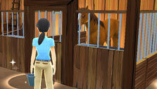 Feeding in My Riding Stables: Your Horse Breeding