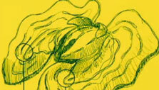A taxonomic sketch of an alien lifeform n In Other Waters