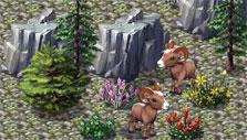 Zoo World 2: Mountain rams