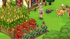 more crops in Oasis
