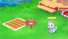 pet cat in Magic Seasons: Fair of Wonders