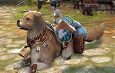 Most Awesome Mount in Echo of Soul
